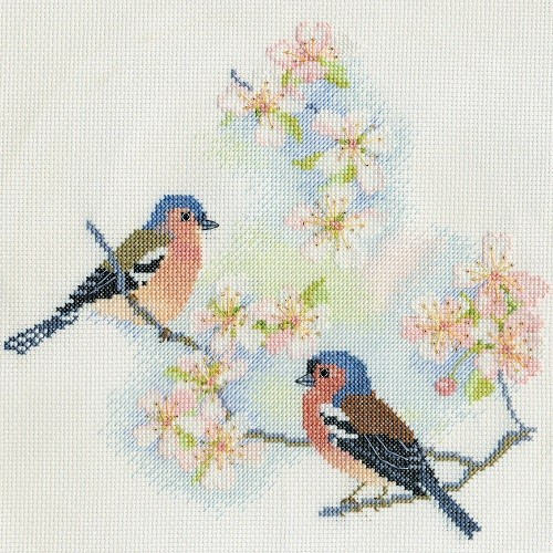 BB02 - Chaffinches and Blossom