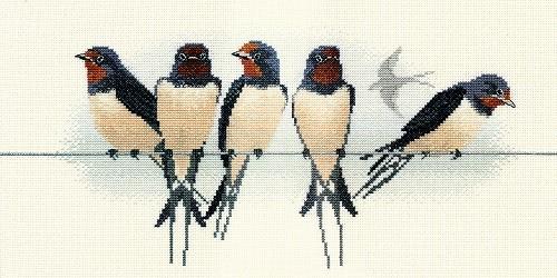 BB05 - Swallows