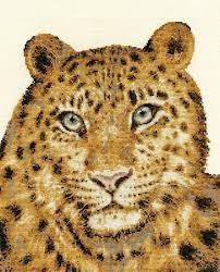 BK1188 - Amur Leopard Twilight Cross Stitch Kit