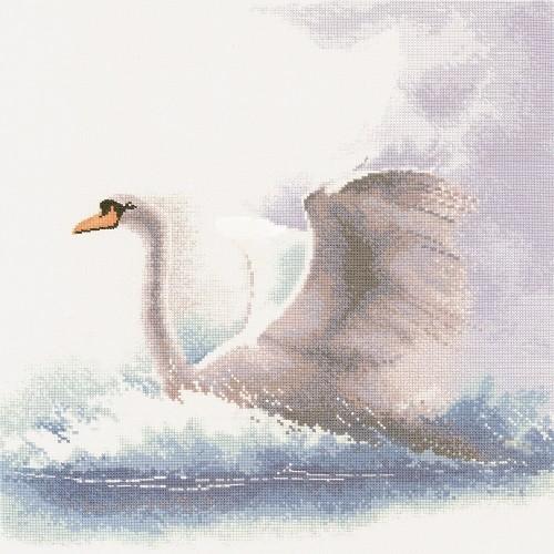 FFSF484 - Swan in Flight