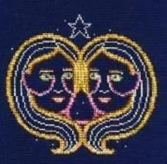 DMC Gemini Cross Stitch Kit BK1864