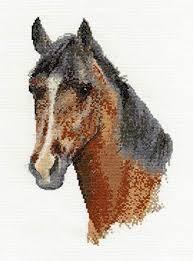 BK1171 - Horse Portrait Cross Stitch Kit