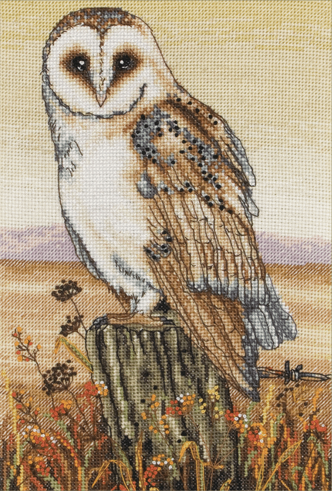 Anchor - Owl Horizon Cross Stitch Kit