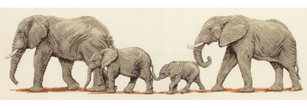 PCE732 - Elephant Stroll