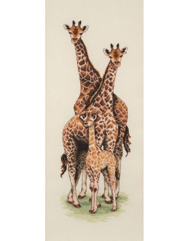 PCE740 - Giraffe Family