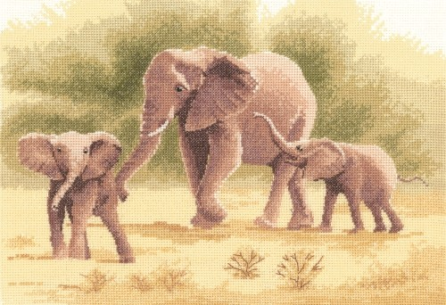 PGEL646 - Elephants