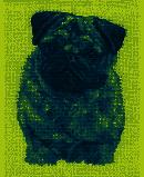 BK1696 - Pug Cross Stitch Kit