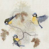 BB01 - Blue Tits and Seed Heads