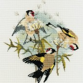 BB04 - Goldfinches and Thistles
