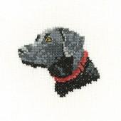 LFBL1425 - Black Labrador