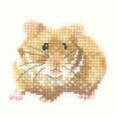LFHS1189 - Hamster