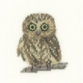 LFOW1142 - Owl