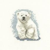 LFPB1062 - Polar Bear Cub