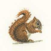 LFRS1149 - Red Squirrel