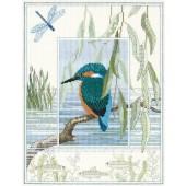 WIL1 - Wildlife Kingfisher