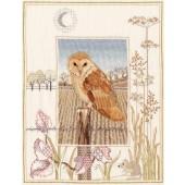 WIL3 - Wildlife Barn Owl