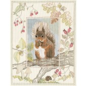WIL4 - Wildlife Red Squirrel