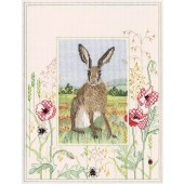 WIL5 - Wildlife Hare