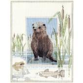 WIL6 - Wildlife Otter