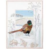 WIL7 - Wildlife Pheasant
