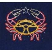 DMC Cancer Cross Stitch Kit BK1865