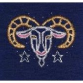 DMC Capricorn Cross Stitch Kit BK1859