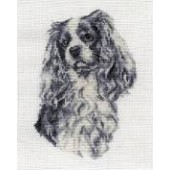 BK1688 - King Charles Cavalier Cross Stitch Kit