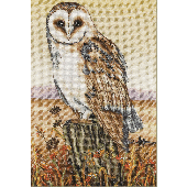 Anchor - Owl Horizon Cross Stitch Kit