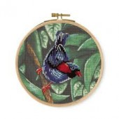 DMC Parokeet Printed Cross Stitch Kit - BK1790