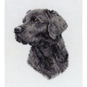 PCE218 - Black Labrador