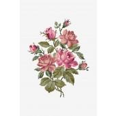 BK 1894 - DMC Pink Roses Bouquet Cross Stitch Kit