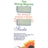 Two Strong Rectangular Magnets