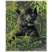 BK907 - Spirit of the Rain Forest Cross Stitch Kit