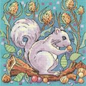 WCSQ1383 - Grey Squirrel
