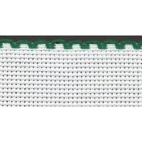 4in / 10cm White / Green Edged Aida Band - 1m